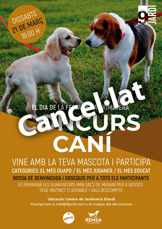 cancela2